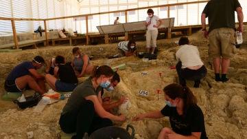 Los primeros habitantes del continente europeo se adaptaron al cambio climatico