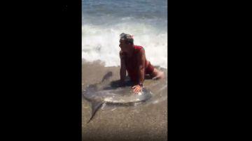 Captura del vídeo en el que puede verse como el hombre retiene al pez luna en la orilla.
