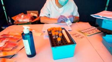 Una sanitaria prepara pruebas del coronavirus en Aranda de Duero