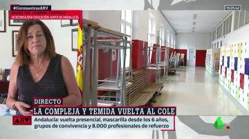 viceconsejera educacion María del Carmen Castillo, viceconsejera de educación de la Junta de Andalucía