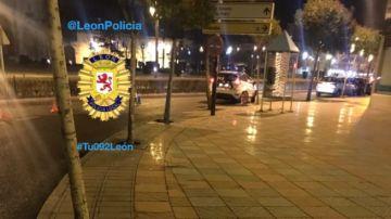 Imagen de vehículos de la Policía local de León