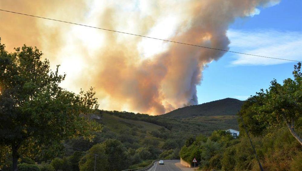 Medios aéreos y terrestres trabajan en la extinción de un incendio forestal declarado en el Valle del Jerte (Cáceres)