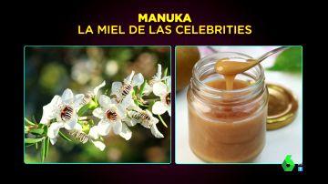 Toda la verdad sobre la miel: ¿adelgaza?, ¿cura los resfriados?, ¿es mejor que el azúcar?