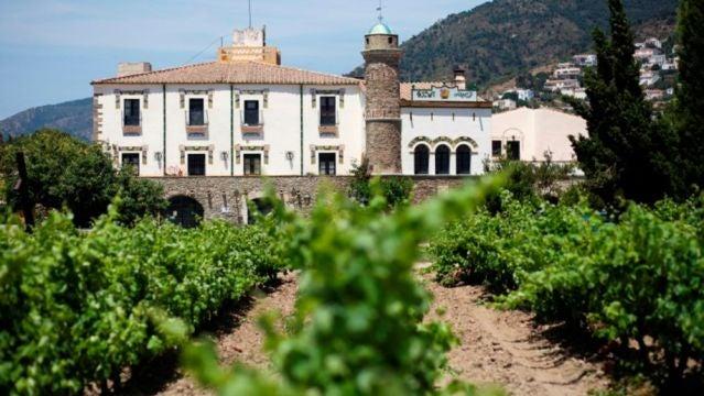 Bodega y viñedos