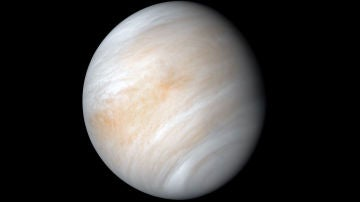 Un compuesto encontrado en Venus podría proceder de organismos vivos.