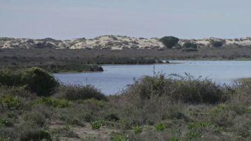 ¿De qué cantidad de agua disponemos en caso de necesidad extrema? Nos adentramos en el acuífero de Doñana