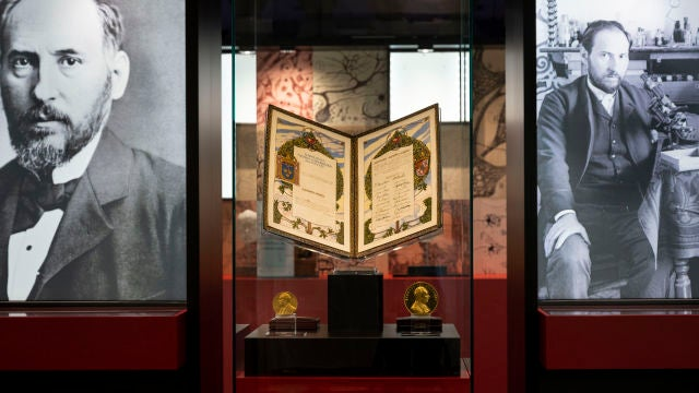 El Museo Nacional de Ciencias Naturales acoge una exposicion sobre el legado de Ramon y Cajal