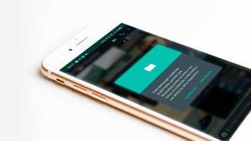 Si no puedes descargar archivos multimedia en WhatsApp, prueba con estos trucos