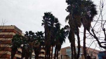 Rachas fuertes de viento en Euskadi