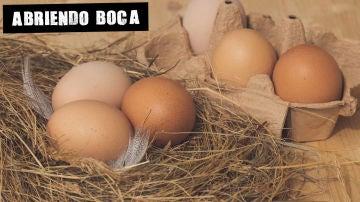 Imagen de archivo de huevos
