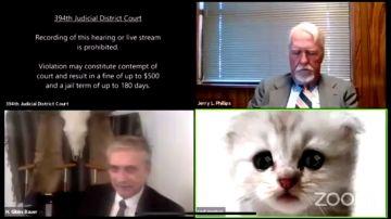 """""""No soy un gato"""": el filtro que jugó una mala pasada a un abogado durante un juicio online"""