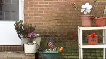 Imagen de la vivienda de la mujer de 73 en la que dos ladrones entraron a robar