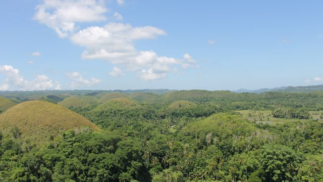 Chocolate Hills. Bohol