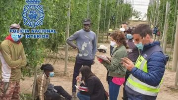 Imagen de la explotación agrícola del empresario que ha sido detenido en Almería