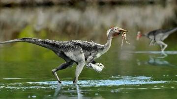 El dinosaurio de Cuenca que revoluciono la historia de los ornitomimosaurios revela nuevos datos