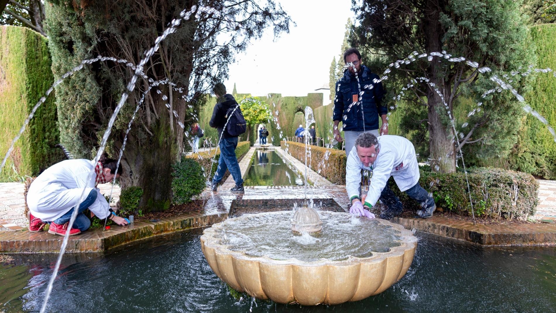 Identifican la variedad de microalgas que habita las fuentes de la Alhambra y el Generalife