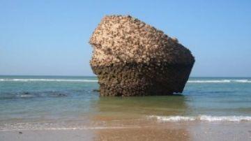 Playa de Matalascañas