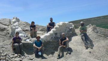 Descubren y recuperan una columna vertebral de dinosaurio de más de 145 millones de años en Teruel