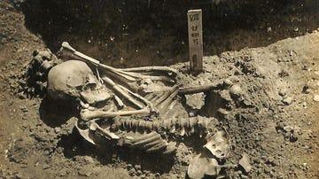 La primera victima conocida de un tiburon es un hombre muerto hace 3.000 anos