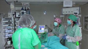 terapia bebes trasplantados