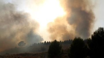 Imagen de las llamas provocadas por el incendio que se ha producido en la localidad albaceteña de Hellín