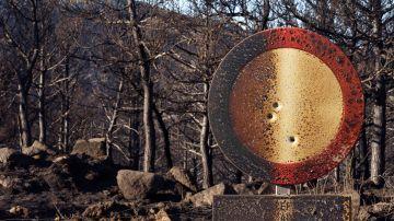 Pinares quemados en la cresta de la sierra del Pico Zapatero, que divide a las dos zonas afectadas por el incendio de Navalacruz (Ávila)