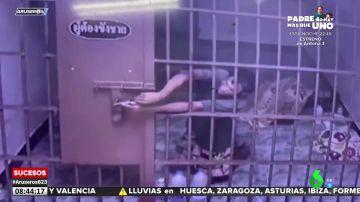 El momento en el que dos detenidos escapan de la celda con la ayuda de un clip
