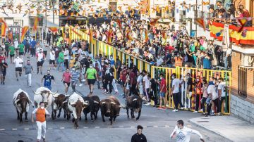 Vista del primer encierro de toros de la feria del Alfarero de Oro en la localidad toledana de Villaseca de la Sagra.