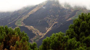 Sierra Bermeja, Málaga