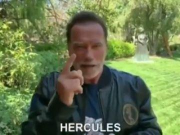 """La emoción de Schwarzenegger por el Arnold Classic en Sevilla: """"Hércules creó la ciudad, según la mitología, ¡Hércules!"""""""