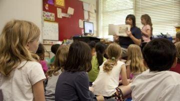 """Así es la educación verde que cada vez más familias ven fundamental para escoger colegio: """"Es la salud la que está en juego"""""""
